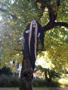 Scary creature hanging in tree