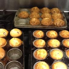 MuffinsClassmatesBeautiful